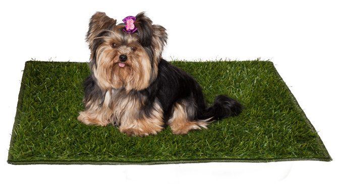 Tapete quadrado de grama sintética para pets
