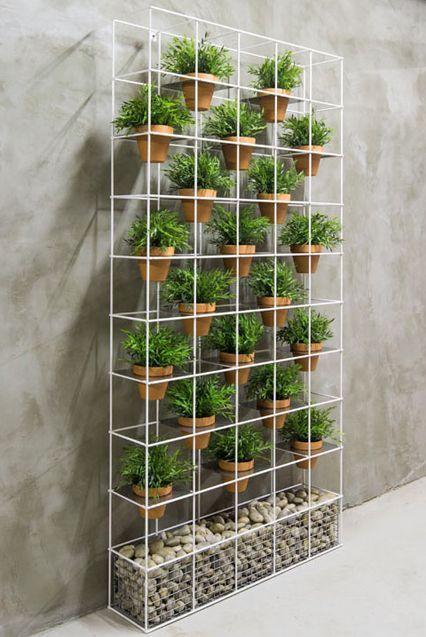 plantas em vasos de barro expostas em estante de ferro