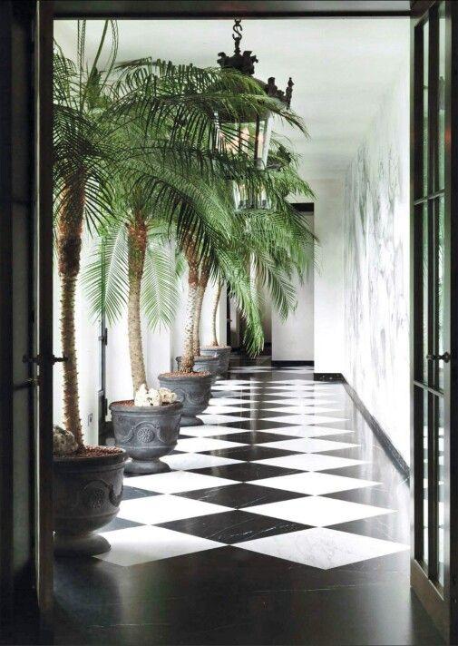 corredor decorado com plantas