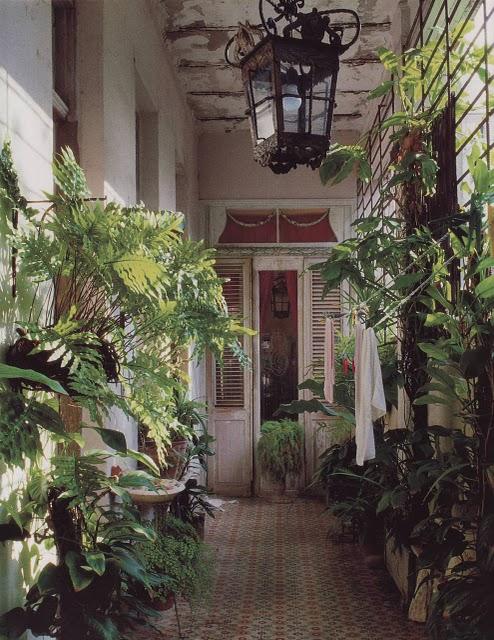 jardim de inverno no corredor da casa