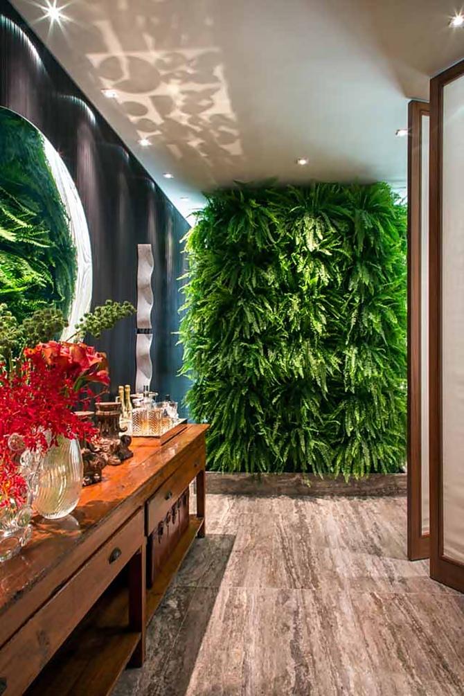 plantas expostas na entrada de casa