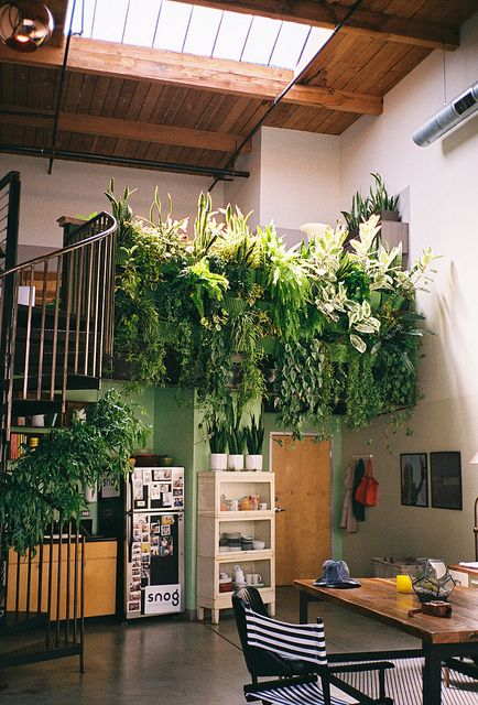 plantas penduradas na escada logo acima da cozinha
