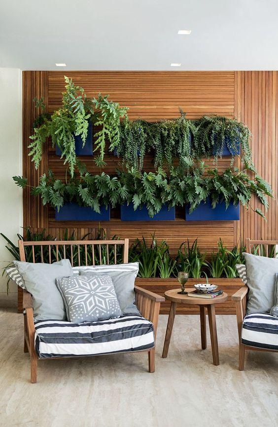 plantas penduradas na parede da sala