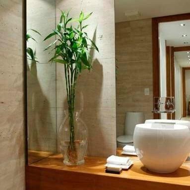Bambu decorando o banheiro