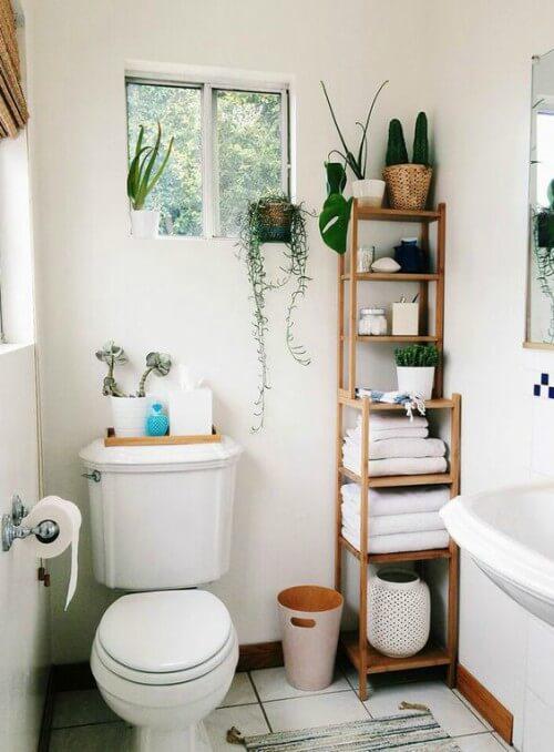 Plantas dispostas pelo banheiro