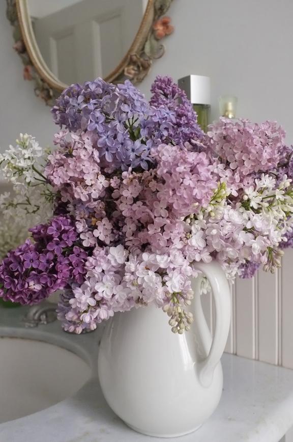 flores roxas dentro de jarra de porcelana