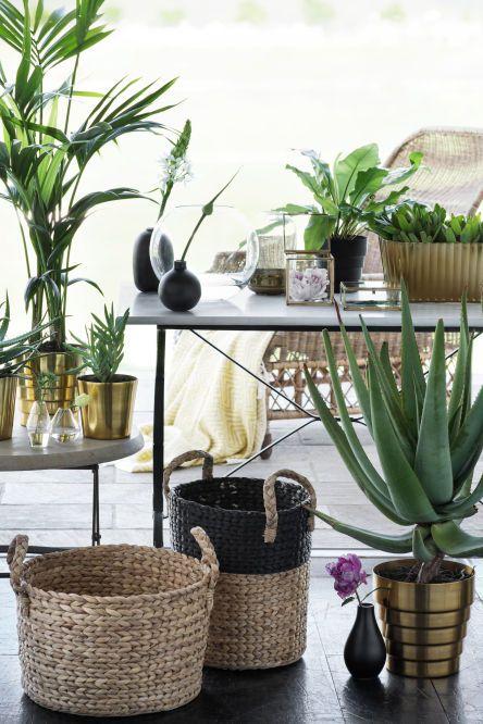 jardim artificial decorado com plantas
