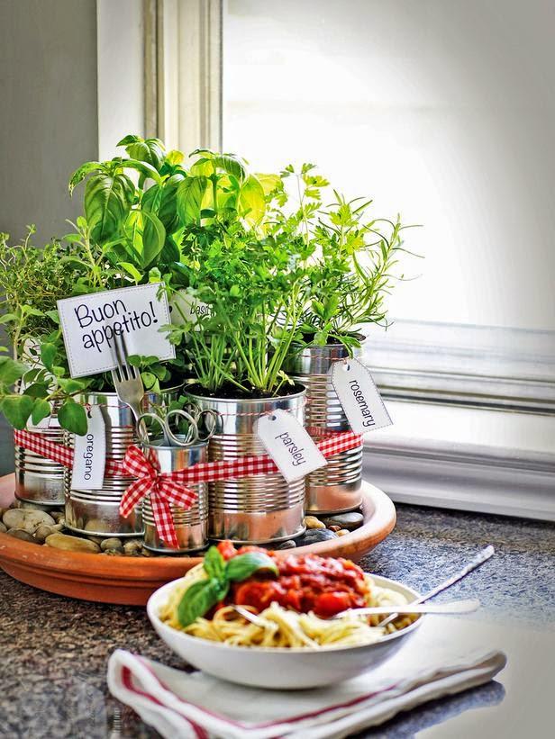 hortinha de ervas na cozinha