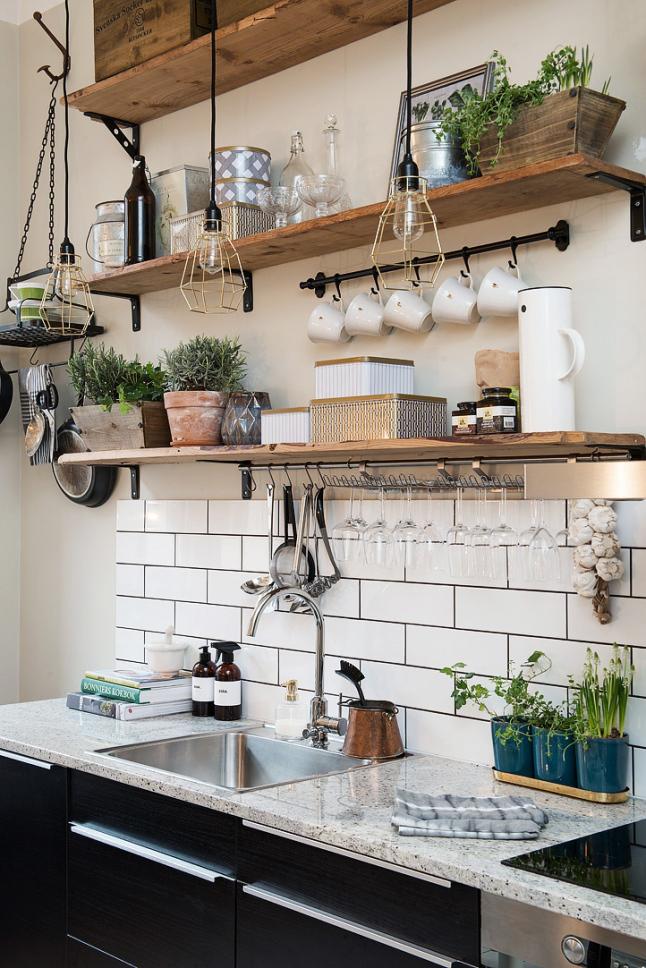 plantas pequenas nas prateleiras da cozinha