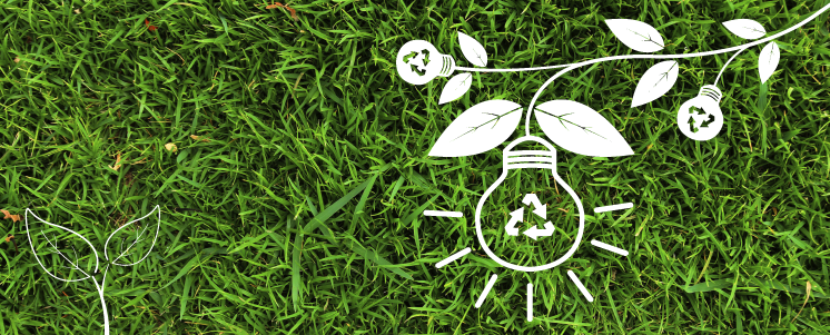 foto ilustrativa sobre como ajudar no desenvolvimento sustentável