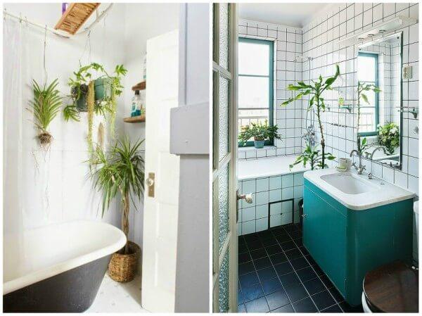 plantar para banheiro
