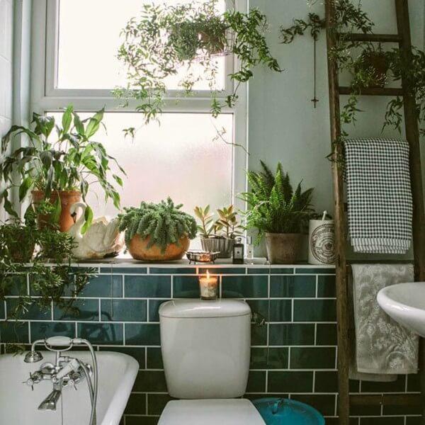 vasos de plantas no banheiro