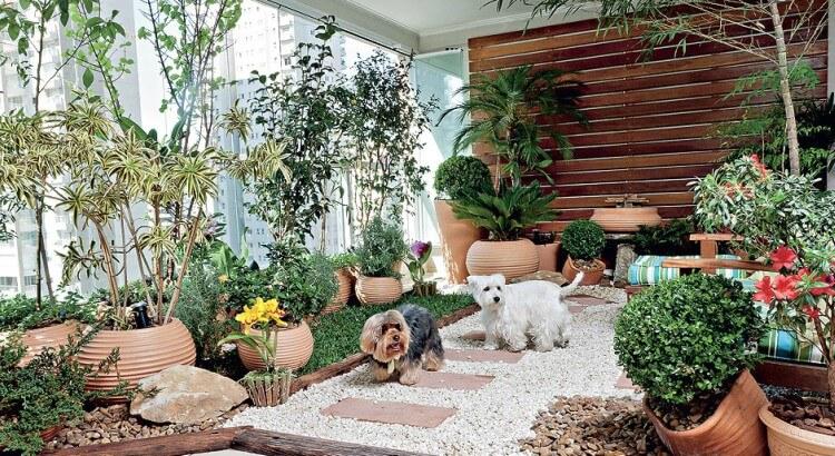 jardim de inverno com diversas plantas