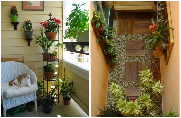 jardim pequeno interno