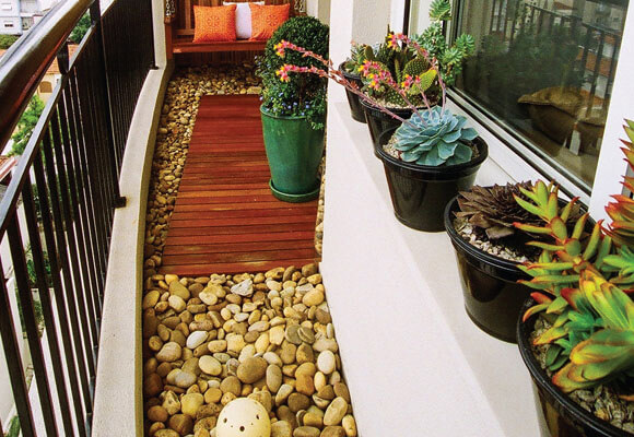 plantas pequenas para varanda