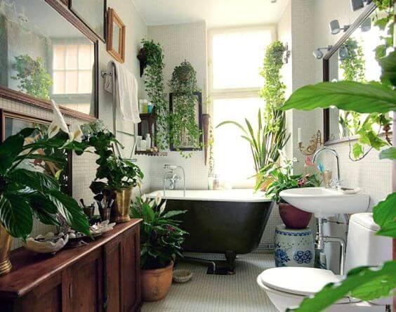 banheiro com luz solar