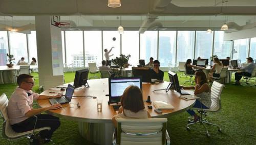Empresa utilizando grama sintética em seu escritório