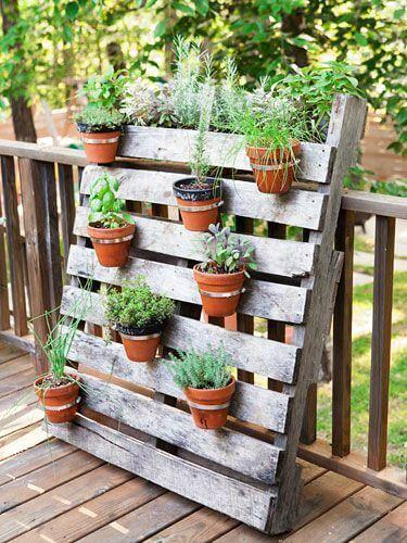 Horta vertical com pallets e vasos de cerâmica