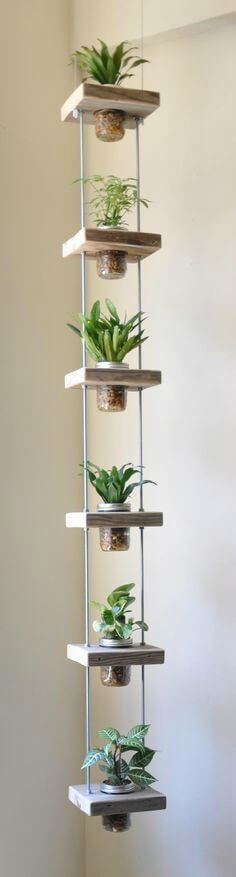 Jarros antigos servindo de suporte para plantas