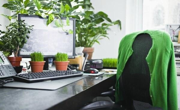 Mesa de Escritório com vasos de plantas