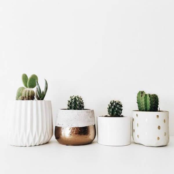 Minicactos em vasos brancos de diferentes formatos