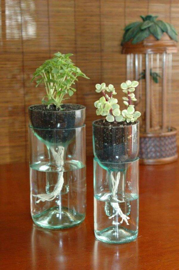 Vasos de plantas feitos com garrafa pet