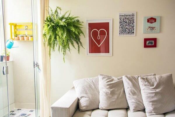 Saiba quais são as melhores folhagens para interiores