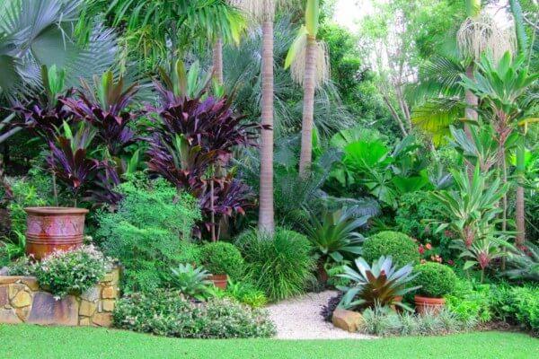 plantas no jardim de inverno
