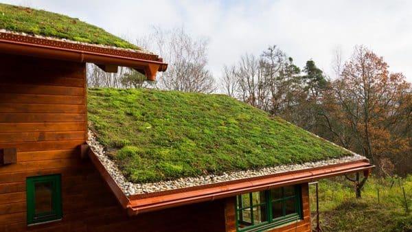 Telhado com cobertura Verde