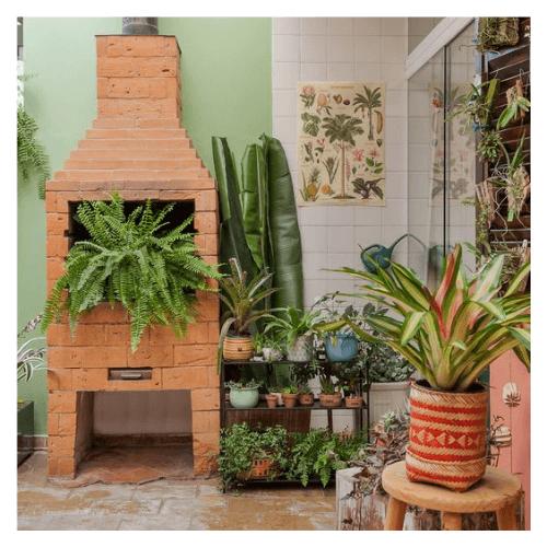 Plantas na casa