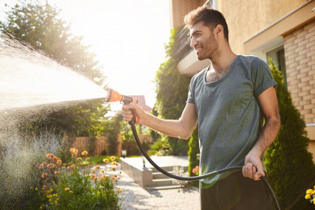 Como organizar um jardim
