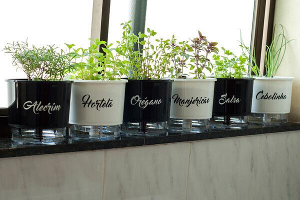 O que é vaso autoirrigável