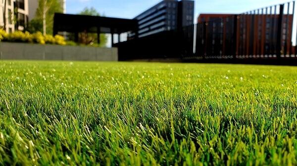 Saiba quando é a hora de trocar o gramado!